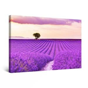 Canvas Wall Art - Abstract - Tree at the End of the Lavender Field Painting 60 x 90 cm