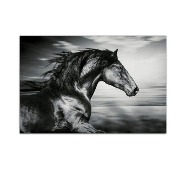 Plexiglass Wall Art - Beautiful Black Horse Decor  60 x 90 CM