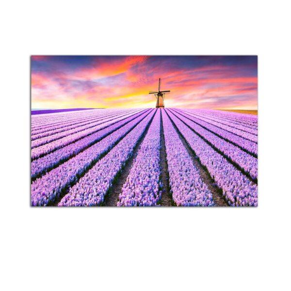 Plexiglass Wall Art - Lavender Field at Sunrise Decor  60 x 90 CM