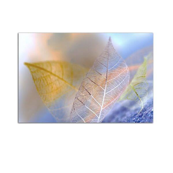 Plexiglass Wall Art - Translucent Leaves Decor  60 x 90 CM