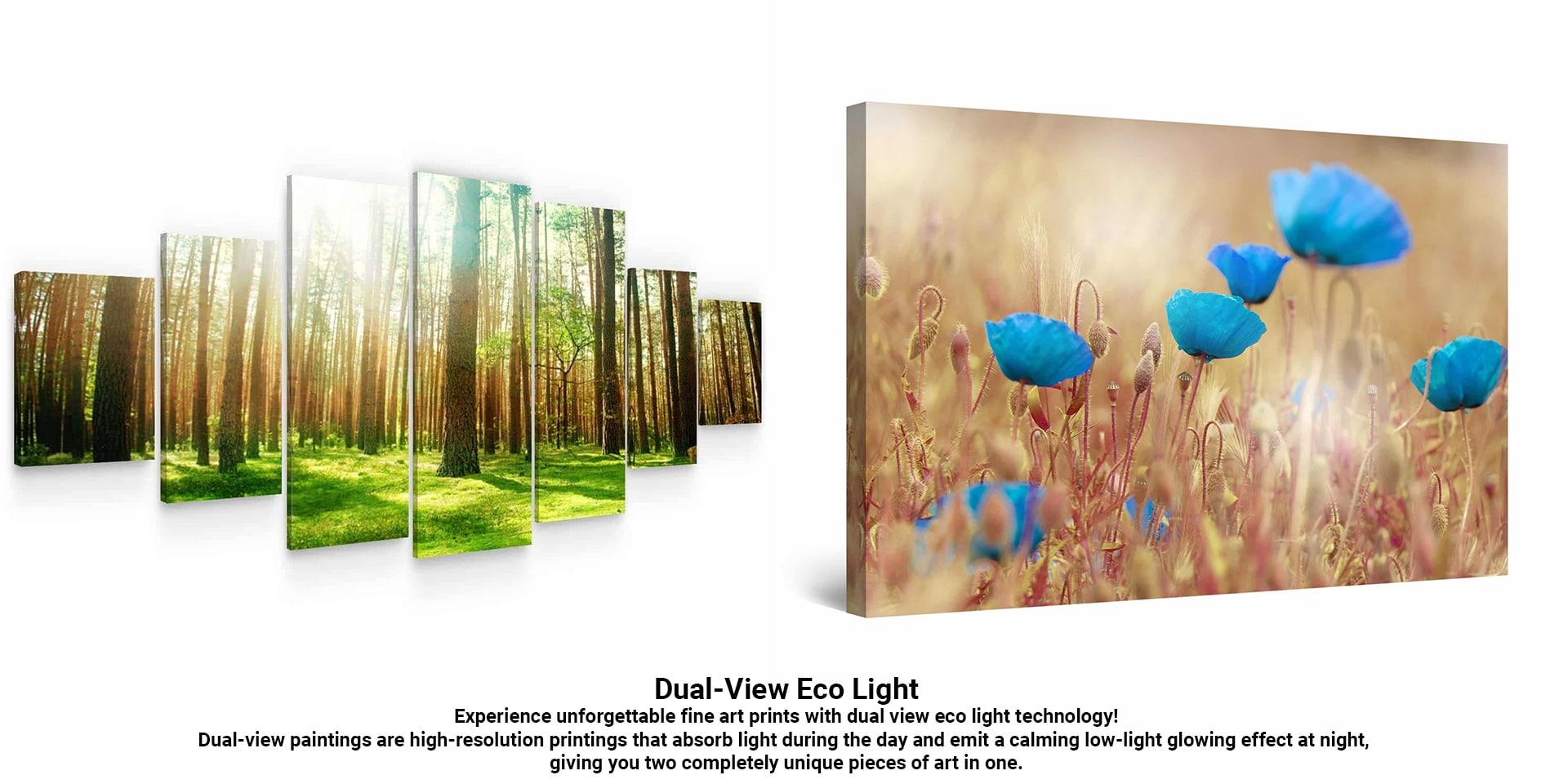 Dual-View Eco Light