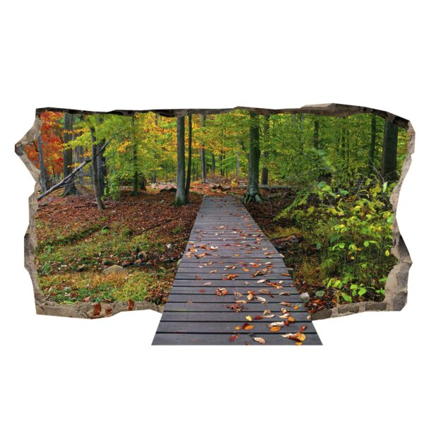 3D Mural Wall Art - Bridge for Forest Amazing